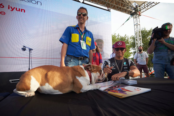 Baku City Circuit, Baku, Azerbaijan. Thursday 16 June 2016. Lewis Hamilton, Mercedes AMG, signs autographs as one of his dogs rests on the table. World Copyright: Steve Etherington/LAT Photographic ref: Digital Image SNE11854