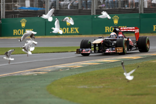 Albert Park, Melbourne, Australia Sunday 17th March 2013 Birds take off as Jean-Eric Vergne, Toro Rosso STR8 Ferrari drives past World Copyright: Andy Hone/  ref: Digital Image HONZ2379