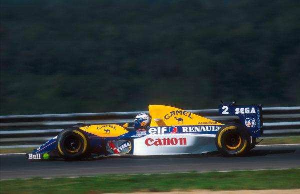 1993 Hungarian Grand Prix.Hungaroring, Budapest, Hungary.13-15 August 1993.Alain Prost (Williams FW15C Renault) 12 position.Ref-93 HUN 08.World Copyright - LAT Photographic