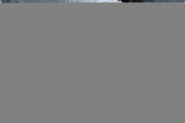 """26 May, 2013, Indianapolis, Indiana, USA With his wife at his side winner Tony Kanaan (#11) kisses """"The Yard of Bricks"""". ©2013, F. Peirce Williams LAT Photo USA"""