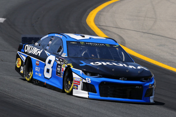 #8: Daniel Hemric, Richard Childress Racing, Chevrolet Camaro Okuma