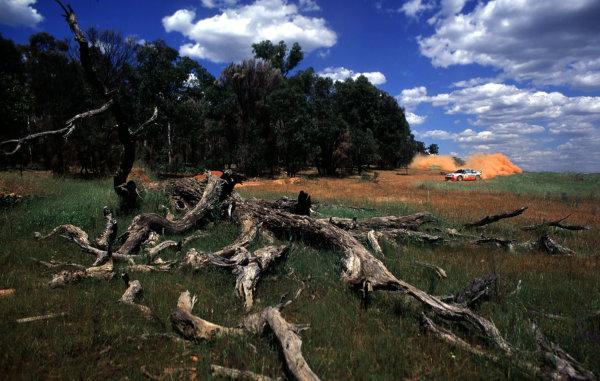 2001 World Rally ChampionshipRally Australia, WRC. 1st - 4th NovemberMarcus Gronholm.World Copyright - McKlein / LAT PhotographicRef: 35mm Image A02