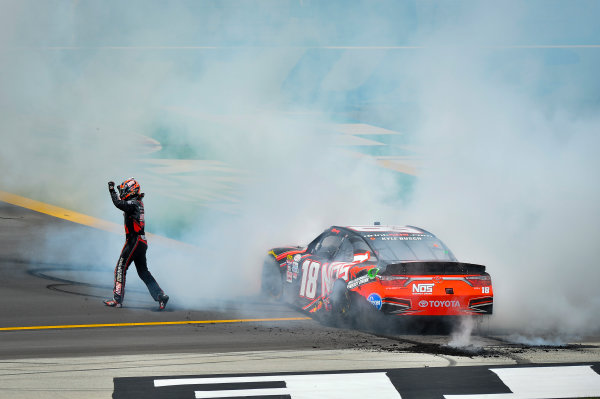 NASCAR XFINITY Series Alsco 300 Kentucky Speedway, Sparta, KY USA Saturday 8 July 2017 Kyle Busch, NOS Energy Drink Rowdy Toyota Camry celebrates World Copyright: Barry Cantrell LAT Images