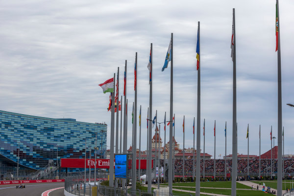 Sochi Autodrom, Sochi, Russia. Sunday 11 October 2015. Felipe Nasr, Sauber C34 Ferrari. World Copyright: Zak Mauger/LAT Photographic ref: Digital Image _L0U9526