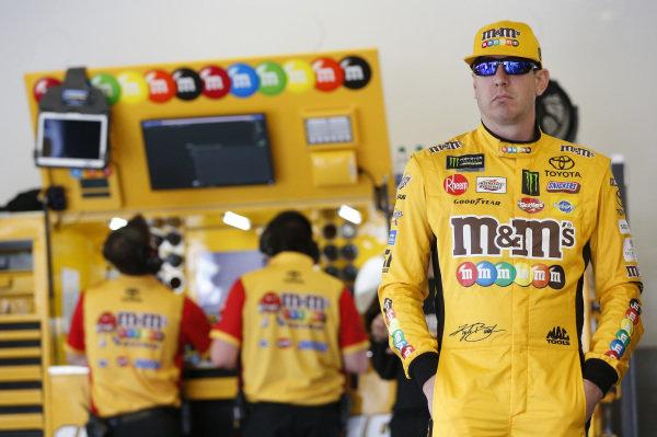 #18: Kyle Busch, Joe Gibbs Racing, Toyota Camry M&M's Chocolate Bar